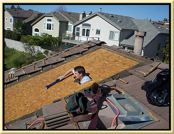 Dana Point Roof Tune up Contractor