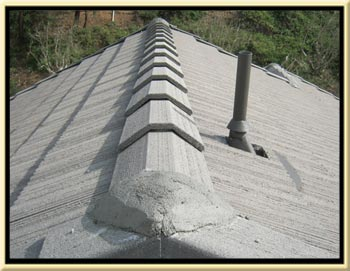 Rancho Santa Margarita Roof Tune Up and Broken Tile Repair