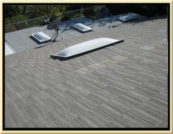 Orange County Skylight Repair and Whole Tile Roof Tune-up