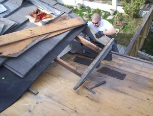 dry rot eave board